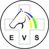 logo EVS_podgląd